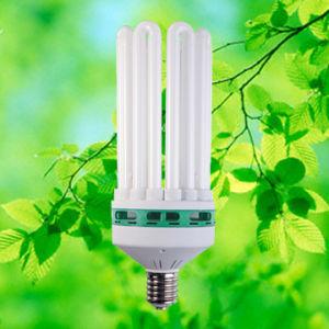 U Shape - 8U / 120 - 200W - Energy Saving Lamp (ZY53)