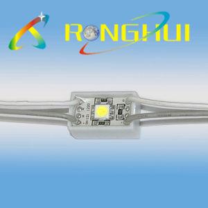 Waterproof Backlight 5050 SMD LED Module (RH-F1220X1SMD-5050)
