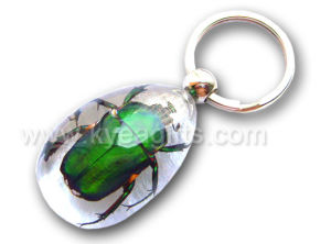 Colorful Green Beetle Key Ring