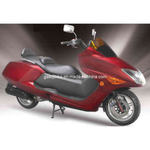 Maxi Scooter (JL250T-F) pictures & photos