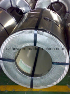 Galvanized Steel Without Lacquer Coating Gi pictures & photos