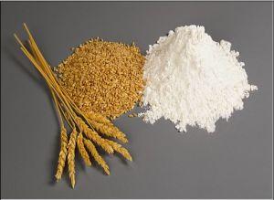 Wheat Gluten (28)