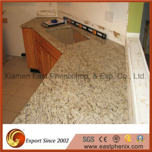 Imported Light Grey Granite Slabe for Kitchen Countertop pictures & photos