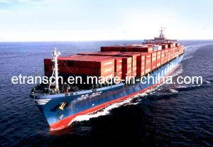 Lcl Sea Freight From Shenzhen to Japan (Tokyo / Yokohama / Osaka / Kobe / Moji)