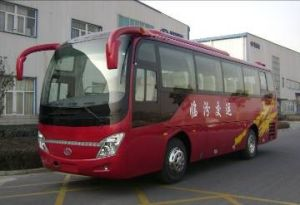 Bus and Bus Chassis (SLG6900C3FR)
