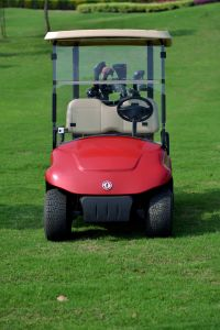 3kw Cheap Golf Cart for Sale