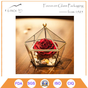 Artistic Clear Glass Jewel-Boxed Glass Geometric Terrarium pictures & photos