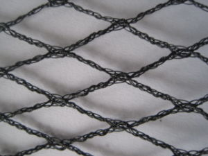 Meyabond Extruded Anti Bird Net with UV Treated pictures & photos