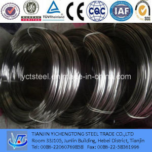 Hot Dipped Galvanized Steel Wire Factory Support pictures & photos
