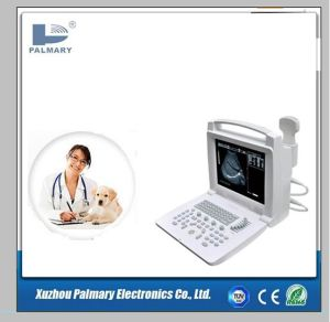 White and Black Full Digital Ultrasound Scanner pictures & photos