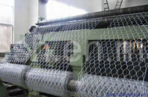Hexagonal Wire Netting with 50mm X 50mm Mesh pictures & photos