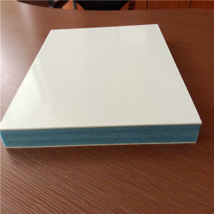 Light Weight Insulation FRP Honeycomb Panels pictures & photos