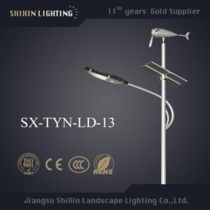 New Wind Solar Hybrid Street Light 60-100W (SX-TYN-LD-5) pictures & photos