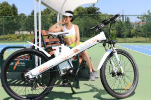 Exclusive Design Mountain E-Bike with Hub Motor 36V/250W pictures & photos