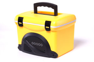 Mini Cooler Box 5liter with Radio for Outdoor Activity Application pictures & photos