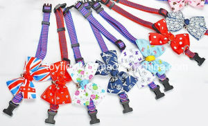 Pet Accessories Collars Leads Bow Tie Dog Collar pictures & photos