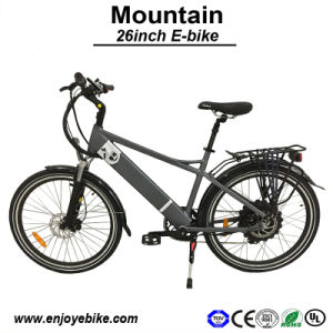 China Electric Bike Manufacturer Newest E-Bicycle E Motorcycle E-Bike (PE-TDE11Z)