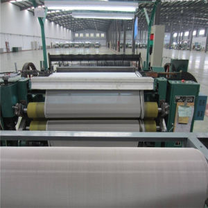 China Professional Manufacturer 304 Stainless Steel Wire Mesh pictures & photos