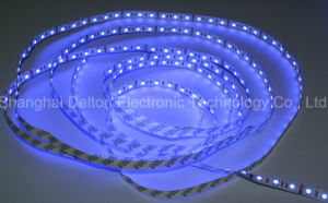 CE Approved DC12V Blue LED Flexible Lighting Strip pictures & photos