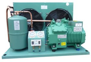 Bizter Brand Condensing Unit for Cold Room Blast Freezer pictures & photos