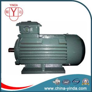 Premium Efficiency Tefc Three Phase AC Motor pictures & photos