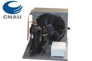 Air-Cooled Condensing Unit, Refrigeration Unit for Cold Room pictures & photos