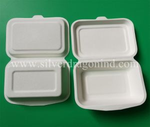 Biodegradable Disposable Sugarcane Bagasse Lunch Box 10 Inch, 3comp Box pictures & photos
