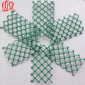 HDPE Geonet Plastic Net pictures & photos