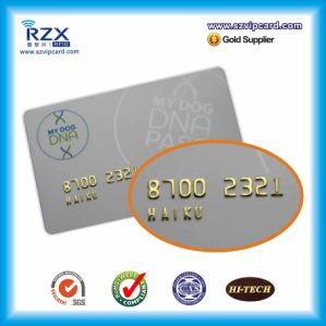 Promotional Advertisement Plastic PVC Card with Silver Embossing Number