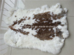 Many Kinds of The Rabbit Fur Skin on Sale pictures & photos