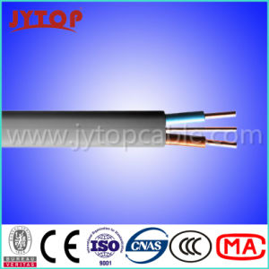 PVC Insulated Flat Wire with 2 Cores pictures & photos