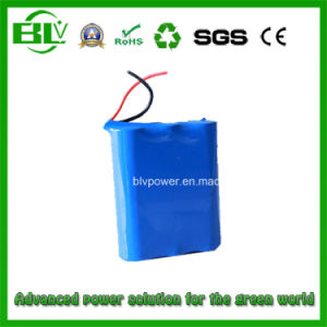 Wholesale High Quality High Capacity POS Battery 7.4V 12000mAh for POS Battery pictures & photos