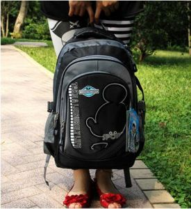 High Quality School Backpack Bags pictures & photos