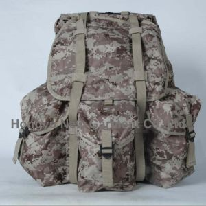 Fashion Alice Waterproof Hiking Backpack Mountain Backpack (HY-B065) pictures & photos