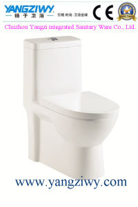 Siphonic Hedging One-Piece Bathroom Toilet pictures & photos