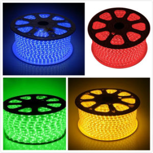 SMD 5050 Green/Blue/Yellow/Red LED Strip Light for Holiday Lighting pictures & photos