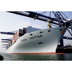 Shipping From China to Manchester Southampton Belfast UK Logistics Service pictures & photos