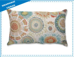 Embroidery Decor Pillowcase-Cushion pictures & photos