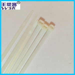 Zhejiang Nylon Cable Tie Manufacturewholesale 8*200mm White Cable Tie with Free Sample pictures & photos