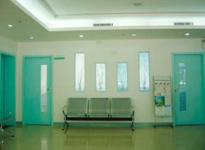 Steel Security Hollow Hospital Door for Aisle pictures & photos