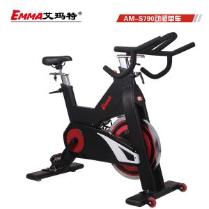 Popular Commercial Use Spin Bike (S790B) pictures & photos