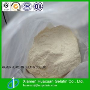 Top Quality Food Additive Fish Collagen Powder pictures & photos