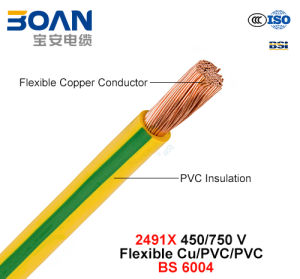 2491X, Electric Wire, 450/750 V, Flexible Cu/PVC (BS 6004) pictures & photos