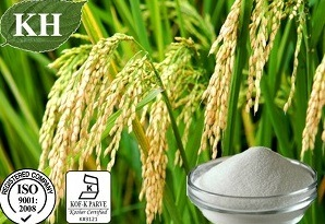 Pure Natural Rice Bran Extract Phytoceramides 1%-10% pictures & photos