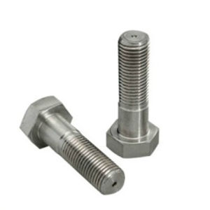 Hastelloy C276 2.4819 Uns N 10276 Hex Cap Screw