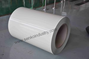 Prepainted Whiteboard Steel Made by Senko Industry pictures & photos