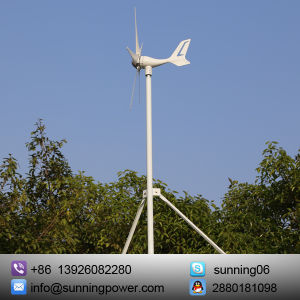 Eco-Worthy 12/24 Volts 300 Watts Wind Solar Powered System: 12V/24V 300W Wind Turbine Generator pictures & photos