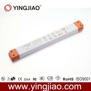 30W 12V/24V Constant Current LED Driver pictures & photos