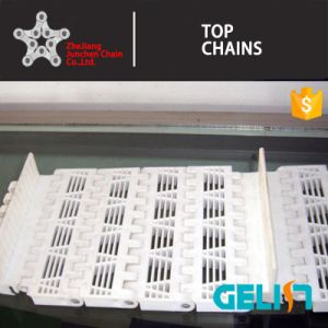 900 a-1 Series Packing Machine Food Industry Plastic Mesh Conveyor Belt pictures & photos