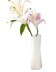 Hotel Bathroom White Waterproof Resin Crystal Vase pictures & photos